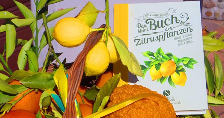 Gartenbücher für den Sommer